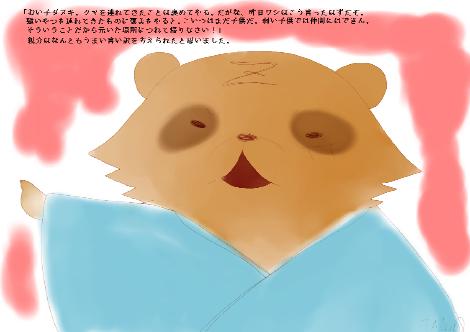 タヌキ財団23