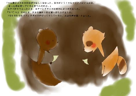 タヌキ財団30