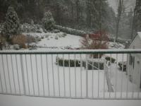 snow121808_2.jpg