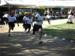 保育園運動会3