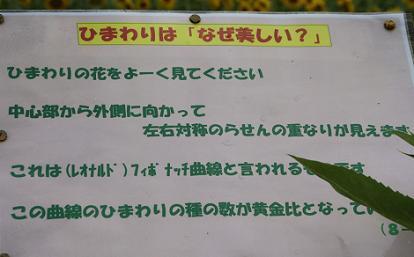 IMG_1064no9.jpg
