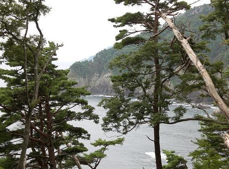 トレッキング・コースから望む根滝半島