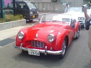 car-festa021.jpg