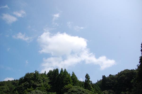 DSC_8133.jpg