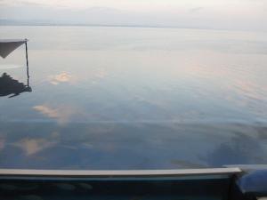 別府湾と融合