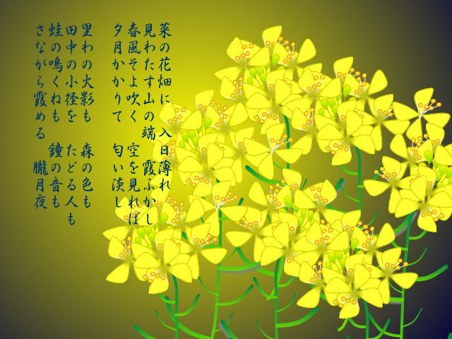 菜の花08-夜(歌詞)