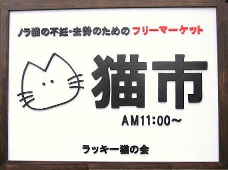 20110905202643049 猫市