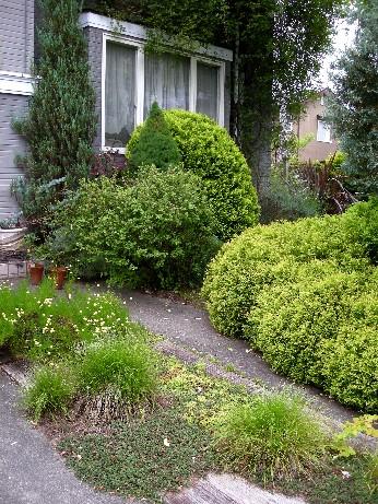 車庫スペース・花壇