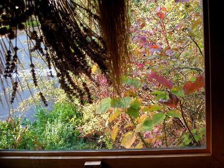 窓越しの眺め1