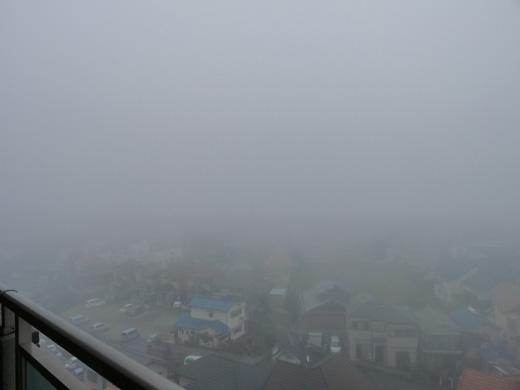 2010.2.10 濃霧の明石江井ケ島