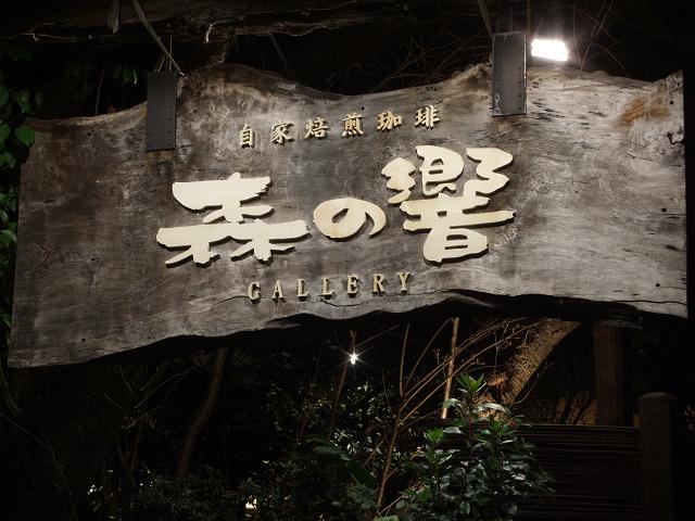 森の響(夜)0011
