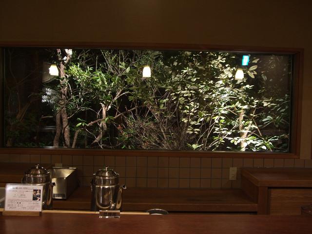 森の響(夜)0018