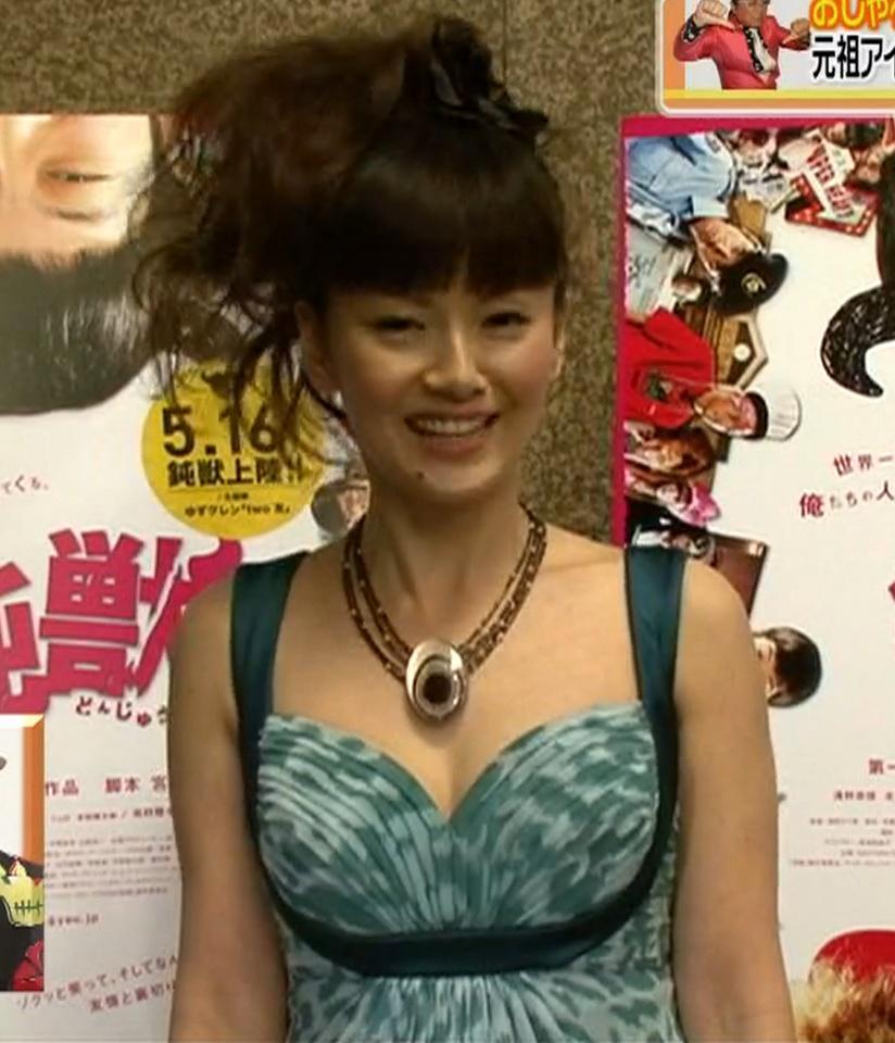 南野陽子 胸元が大きく開いたドレスキャプ画像(エロ・アイコラ画像)