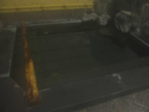 20110515・上野鉱泉08