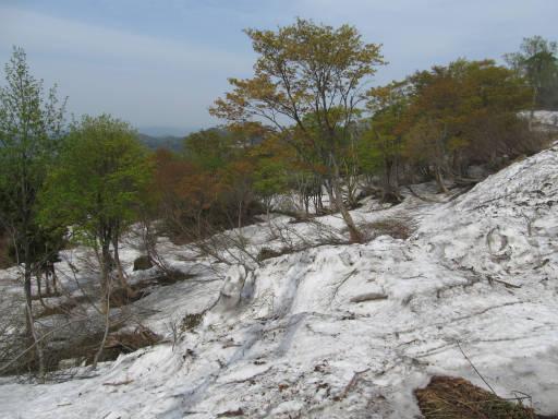 20110515・菖蒲高原上部10