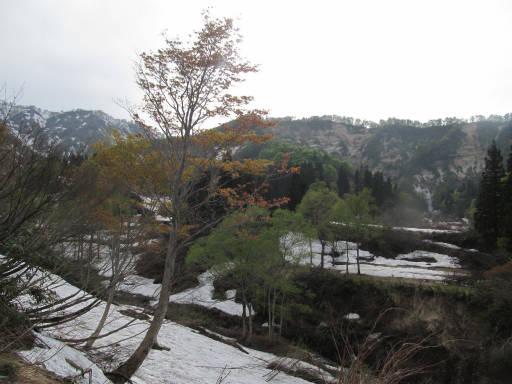 20110515・大厳寺05