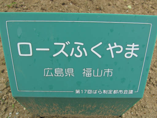 20110625・敷島公園ばら園のバラ32-1