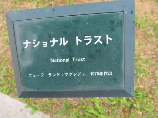 20110625・敷島公園ばら園のバラ46-1