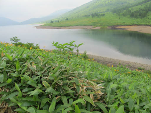 20110717・野反湖空15