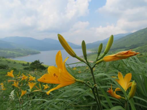 20110717・野反湖13