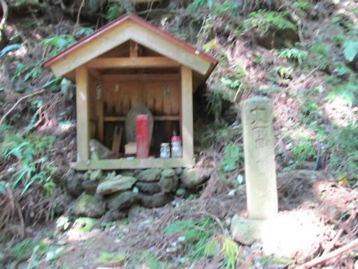 20110910・武甲山3-08