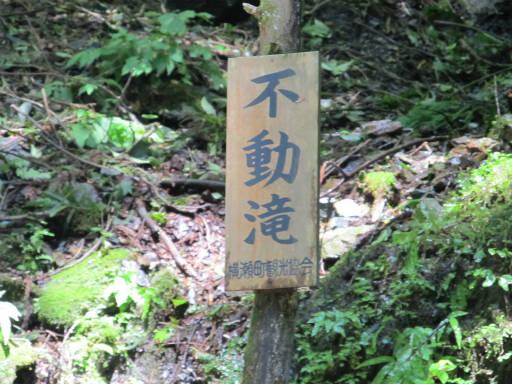 20110910・武甲山3-07