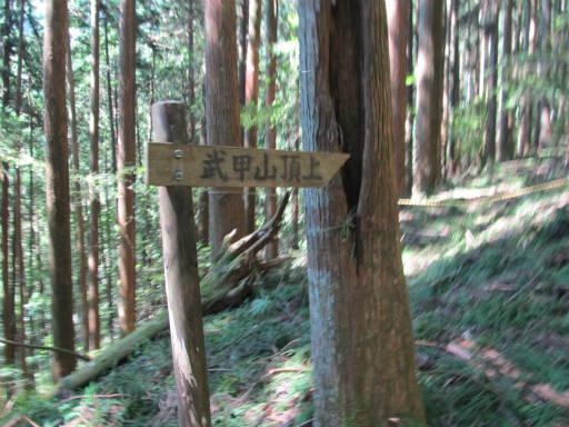 20110910・武甲山3-18