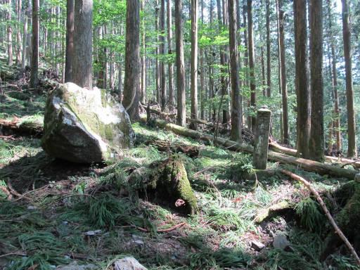 20110910・武甲山3-20・10:30