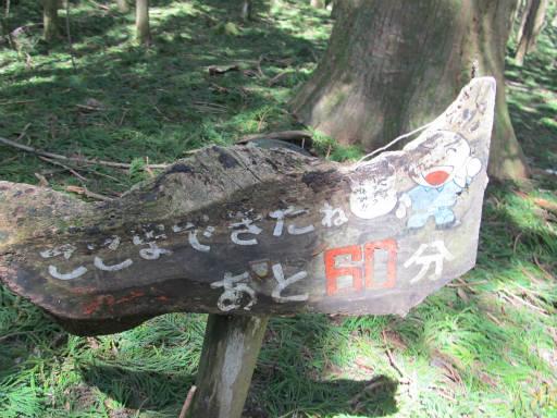 20110910・武甲山3-29・11:00着