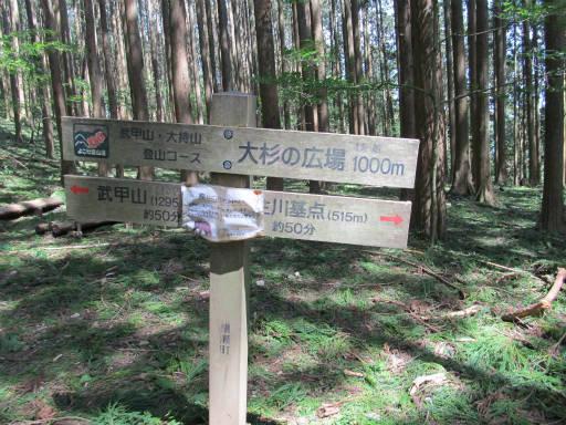 20110910・武甲山3-30