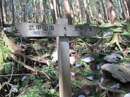 20110910・武甲山4-11・11:50