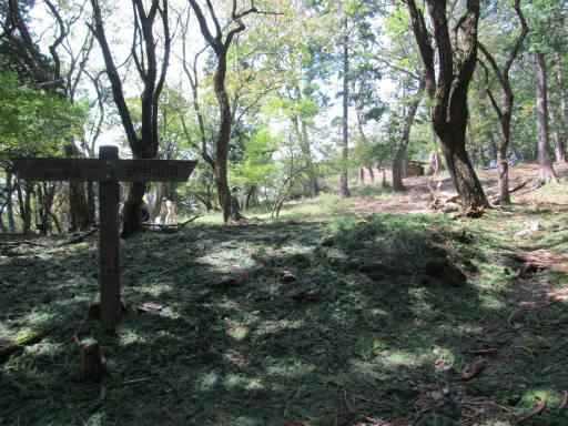 20110910・武甲山4-29