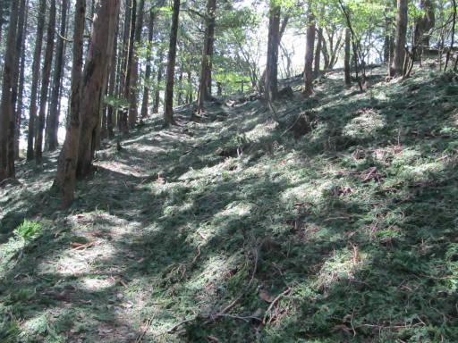 20110910・武甲山4-27