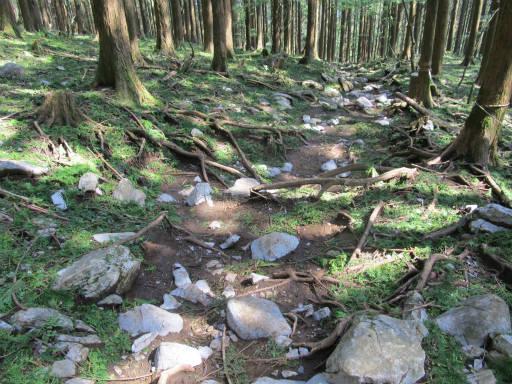 20110910・武甲山6-12