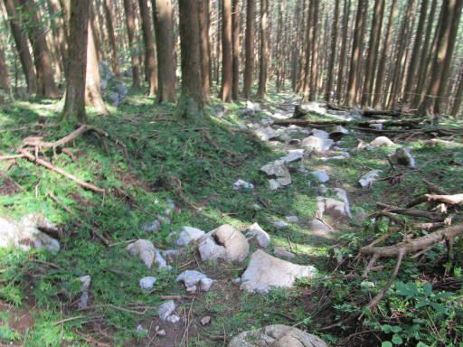 20110910・武甲山6-10