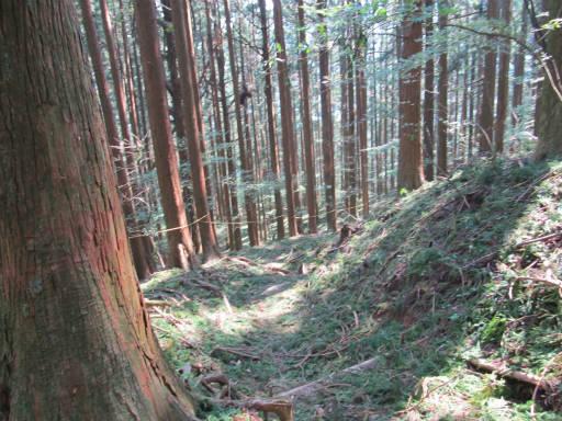 20110910・武甲山6-14