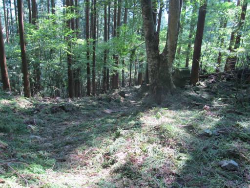 20110910・武甲山6-28