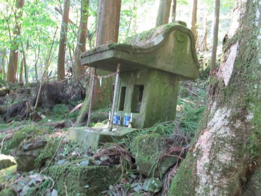 20110910・武甲山6-29