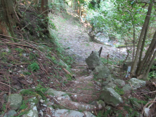 20110910・武甲山7-26