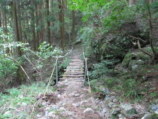 20110910・武甲山7-25