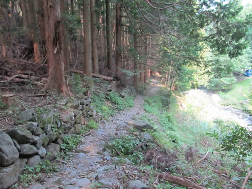 20110910・武甲山7-31