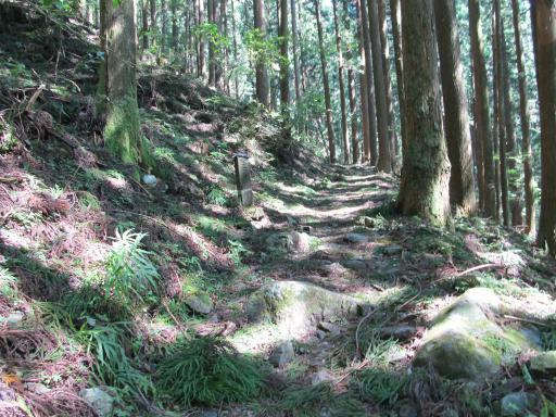20110910・武甲山2-28 やや大
