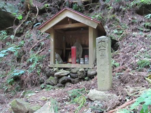 20110910・武甲山7-20 やや大