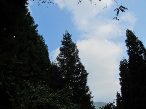 20110910・武甲山空11・生川への道