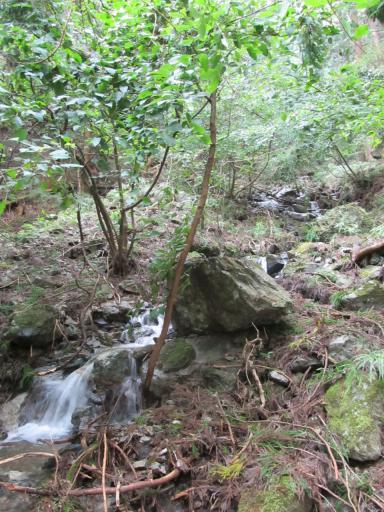 20110910・武甲山空10・不動滝の近くの滝