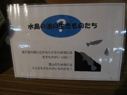 20111204・自然観察会1-02