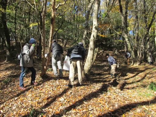 20111204・自然観察会1-18