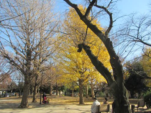 20111218・中野めぐり3-29
