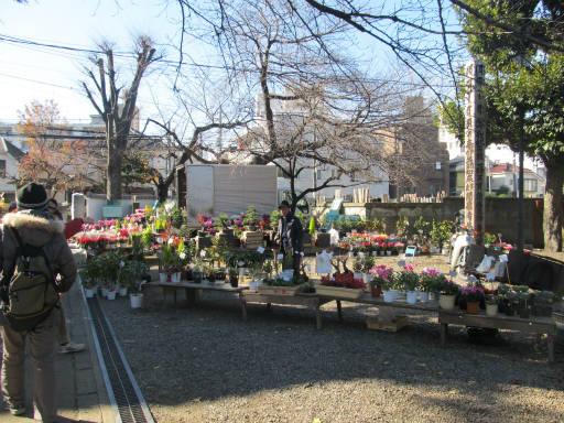 20111218・中野めぐり4-09