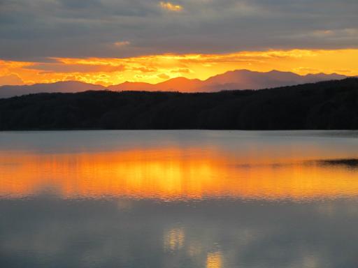 20120114・狭山湖1-22